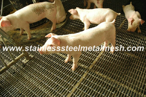 Pig Raising Crimped Mesh